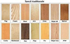 variatiile lemnului